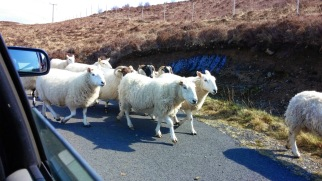 Highland Traffic