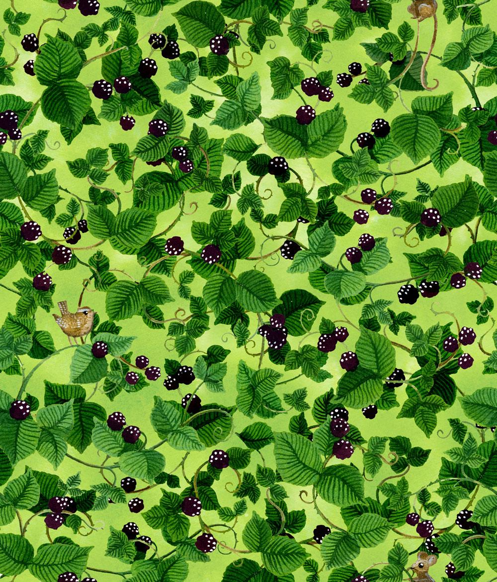 Blackberry-Underlayer-1